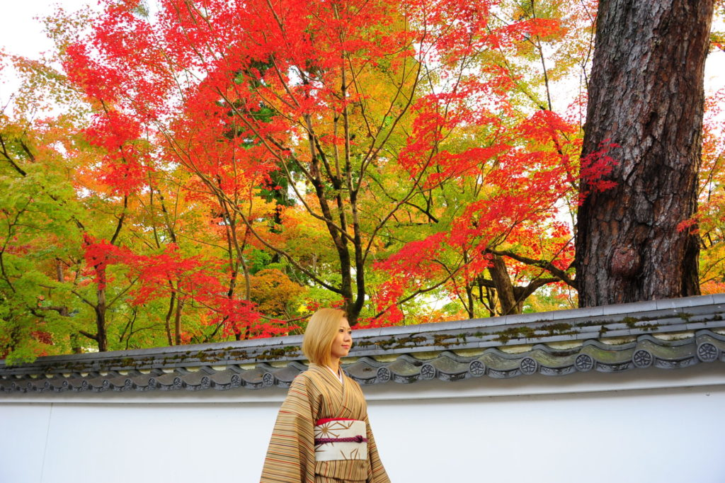 大人の京都は永観堂の紅葉